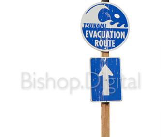 Bird on Evacuation Sign
