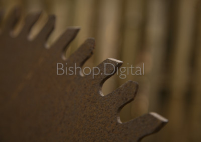 Old Rusted Saw Blade